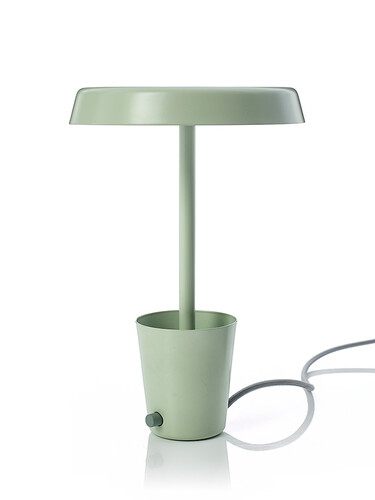 LED-Tischleuchte Cup Lamp