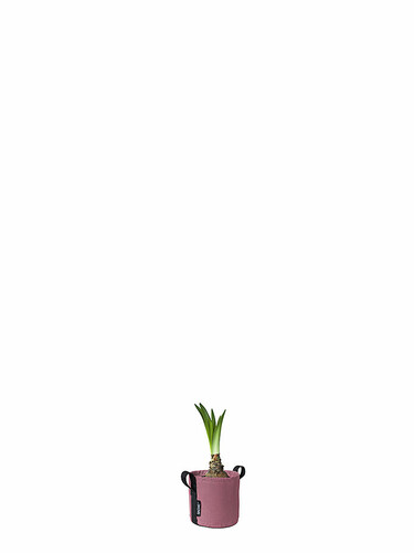 Pflanzsack Pot 3L