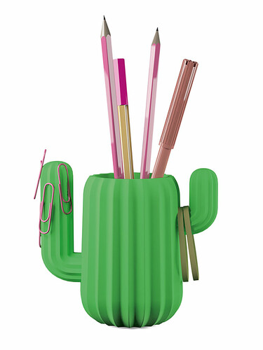 Schreibtisch Organizer Kaktus
