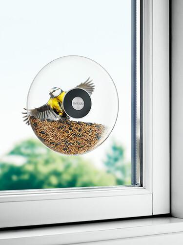 Vogelfutterkugel Ø 20 cm | transparent