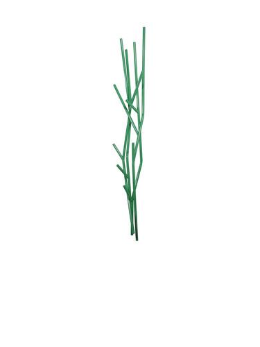 Wandgarderobe Latva Wandgarderobe | grün