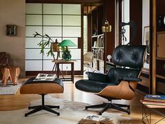 Eames Lounge Chair Palisander Sofort Lieferbar Cairo De